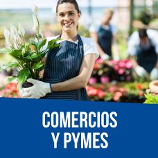 b2-comercios-pymes-02